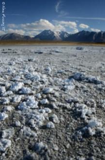 Salt deposits by the hot springs