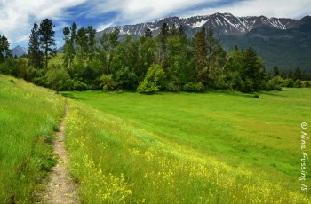 Gorgeous Iwetemlaykin trails