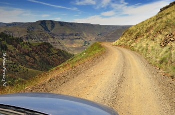 The curvy road into the canyon