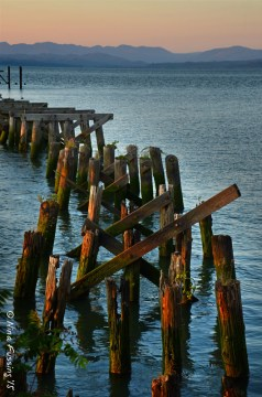 Dusk by old pilings