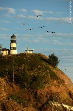 Cape D Lighthouse