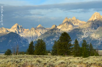 Pretty much every view of the Tetons is a good one