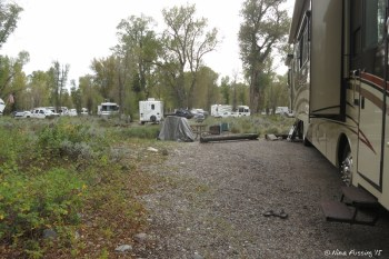 """Loop C - View of our """"sitting area"""" in 127. It was spacious enough, but we had far too many RV's around us in the back."""