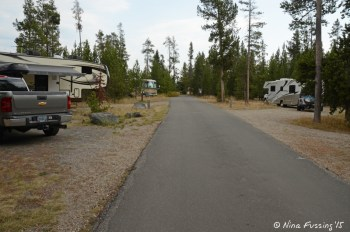 More river-facing sites. 5th wheel in #55 on left with #56 (pull-through) on right.