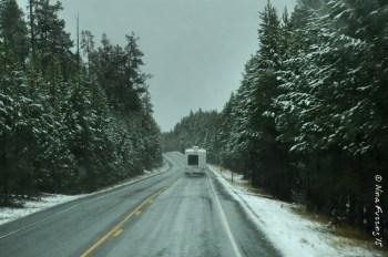 Snowy drive thro Yellowstone