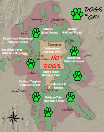 Doggies are allowed everywhere in the green areas!