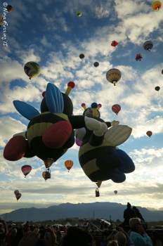 "The Bumblebee balloons often ""kiss"" as they ascend."