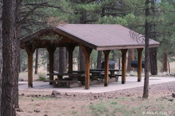 """View of communal """"sitting area"""" in Group Camping."""