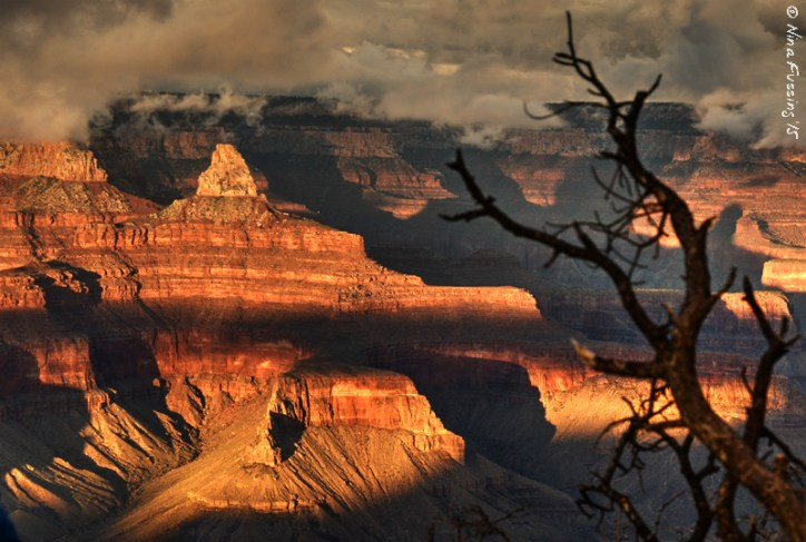 The reds of the canyon are particularly intense just ~1/2 hour before sunset