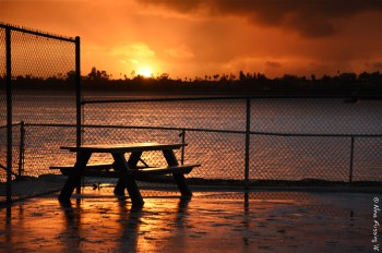 Post storm sunset -> just a flash of orange reflected in puddles