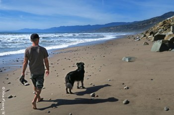 Walking doggie at low tide on the beach (accessed from the steps at Faria County Park)