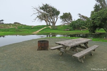 """Typical """"sitting area"""" view. This is site #29."""