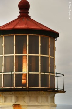 The Fresnel lens peeks out
