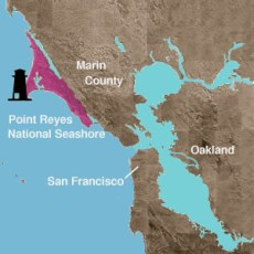 """Point Reyes Lighthouse is """"out there"""""""