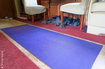 "We have yoga mats on the floor for ""grip"". You can see Polly in her resting place by the dinette."