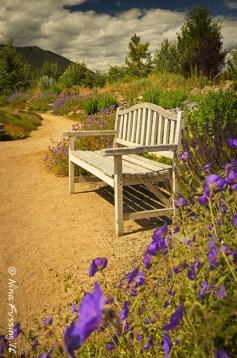 Sawtooth Botanical Gardens