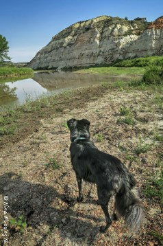 Polly on the Maah Daah Hey Trail