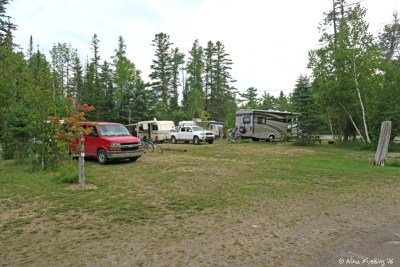 View of section D campsites further into the campground. Site 461 in center.