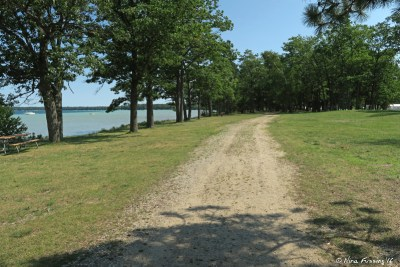 The lovely walking trail by the lake