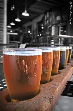 Beer flight at Pigeon Hill Brewing