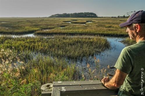 Overlook at the Virginia Eastern Shore Wildlife Refuge