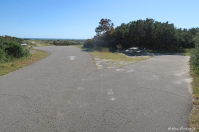 View of end of top-tier sites in P Loop. Site P68 on right with pull-in P63 on left. Both these sites have great views of the dunes/ocean.