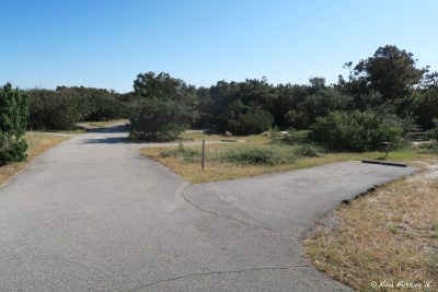 View down D connector. Lots of small, uneven sites here (no way we could fit). Site D9 on right with D7, D5 behind.