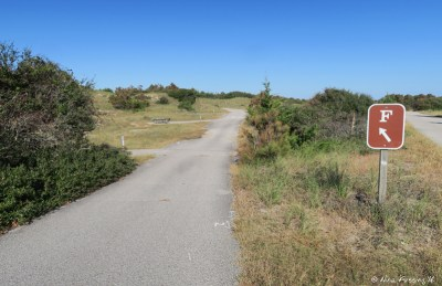 View down beginning of F loop (small, uneven sites). Site F1 on left with F3 behind it.