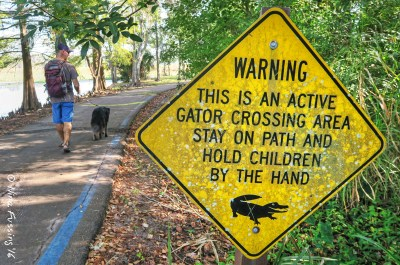 Parker Lake was a great place to walk the dog (just watch out for those pesky gators)