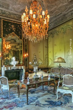One of the many opulent rooms