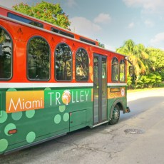 Miami, FL – Staying, Getting Around, Dogs & More…