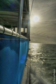 Early AM boat trip