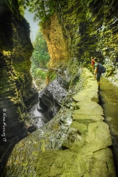 Narrow gorges
