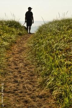 Campobello trails