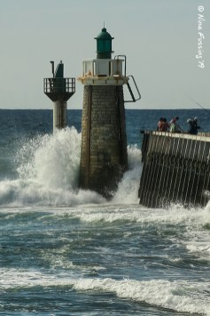 The port lighthouse