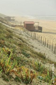 Dunes & snack-shacks