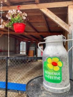 The Lait Coeur D'or farm