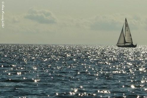 Daytime ocean breeze