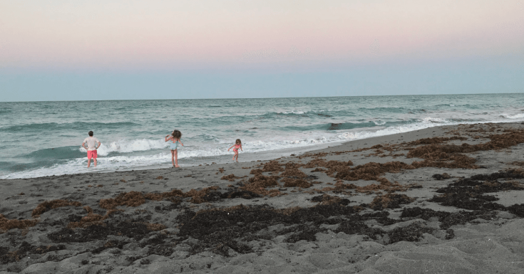 Jupiter Florida Travel Guide: Where to Stay & Things to Do!