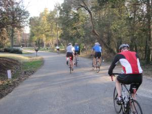 Wheel Nuts Bike Shop bike ride9
