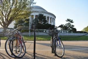 Wheel Nuts Bike Shop jefferson memorial