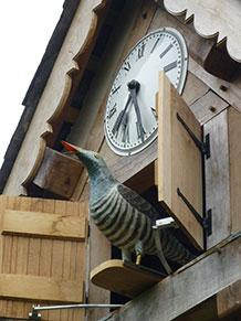 Water powered Cuckoo clock at Westonbury Water Gardens