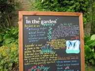 Notes from Croft Castle Walled Garden