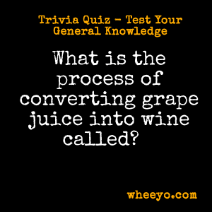 Wine Trivia Questions_Converting Grape Juice into Wine