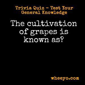 Wine Trivia Questions_Cultivation of Grapes