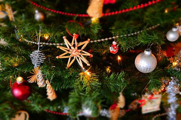 A Brief History of Christmas Trees