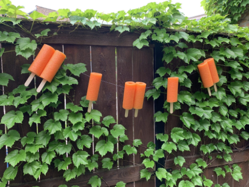 Pool Noodle Popsicle Garland