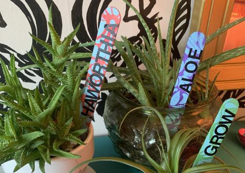Indoor Plant Markers