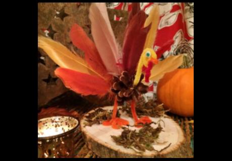 Pinecone Turkey featured