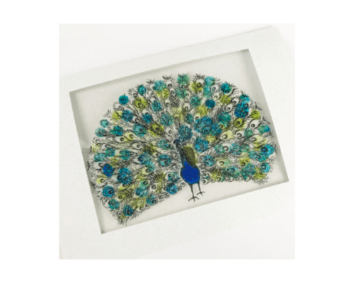 Peacock-Window-Card 500